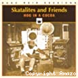Skatalites and friends : Hog in a cocoa