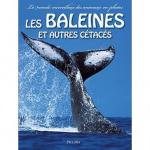 Les baleines et autre cétacés